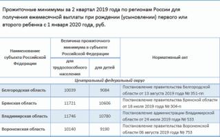 Выплата пособий за рожденного ребенка в 2020 году