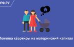 Использование материнского капитала на приобретение квартиры старшей дочери