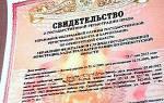 Все о свидетельстве о регистрации приобретенного за кредитные средства